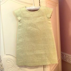 Girls dress in lime green and gold shimmer design